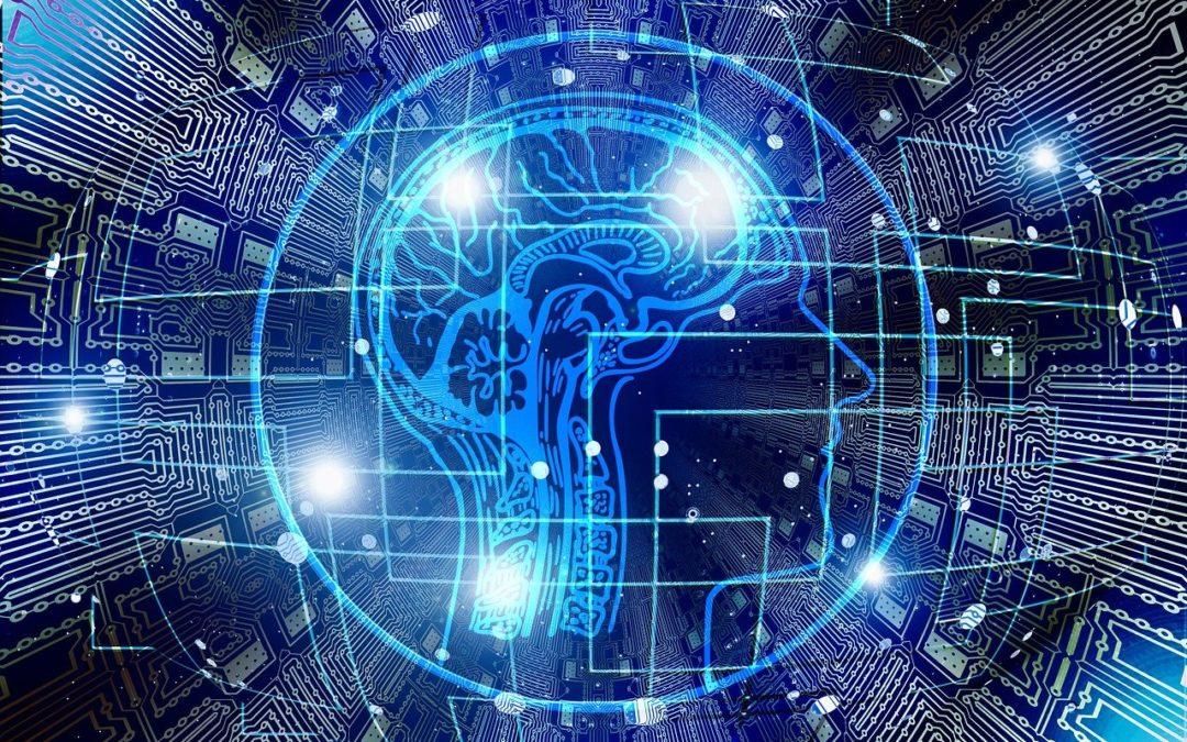 Интеллект и тело, где связь?
